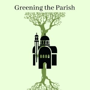 """How-to"" Green Your Parish, Episode 3: Creation and Sacraments"