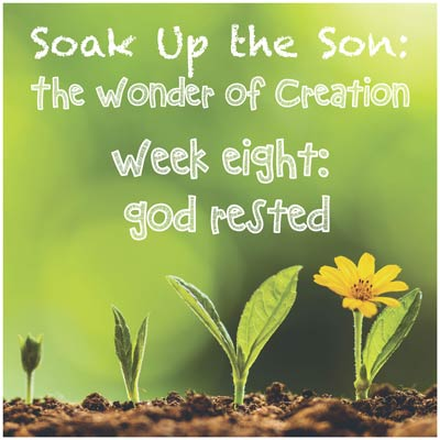 Soak Up the Son - Week 8: God Rested